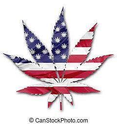 norteamericano, cannabis, legalization