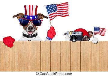 norteamericano, perros