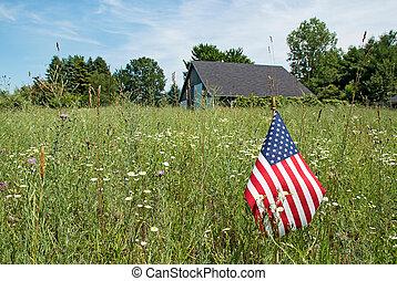 norteamericano, wildflowers, bandera