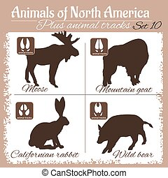 North America animals and animal tracks, footprints. Vector...
