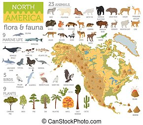 North America flora and fauna map, flat elements. Animals,...