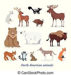 North American Animals Cartoon Flat Icons Set