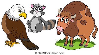 North American animals collection - isolated illustration.