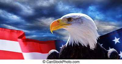 North American Bald Eagle (Haliaeetus leucocephalus) and USA flag with dark storm clouds at the background.