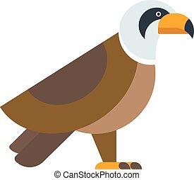North American bald eagle raptor wildlife bird and hawk predator animal cartoon vector.