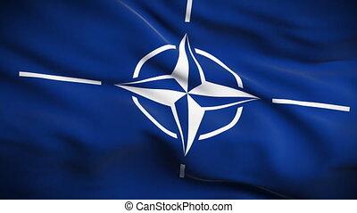 North Atlantic Treaty Organization - HD 1080. Highly...