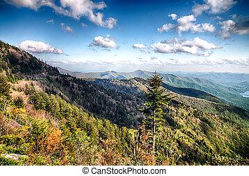 North Carolina Great Smoky Mountain Scenic Landscape