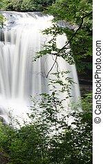 North Carolina Waterfall 2