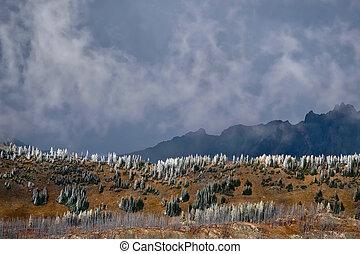 North Cascades scenic landscape.