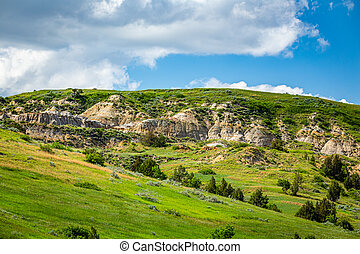 The East River Road at Theodore Roosevelt National Park offers countless spectacular summertime viewpoints.