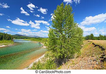 North Fork Flathead River Montana