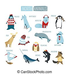 North or South polar animals vector cartoon design - Cartoon...