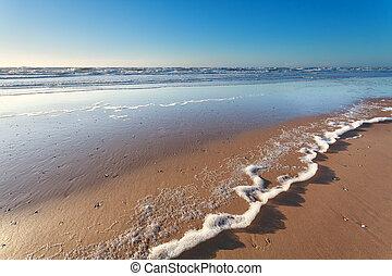 North sea sand beach and sunshine, Holland