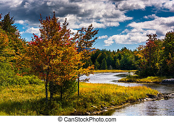 Northeast Creek, on Mount Desert Island in Bar Harbor, Maine.