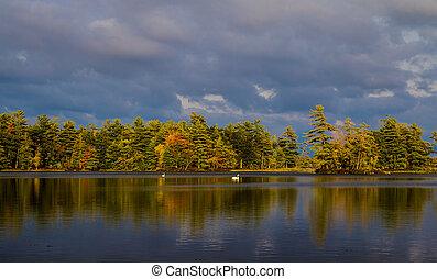 Northern Autumn Lake