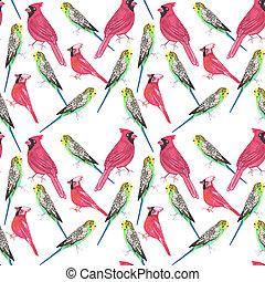 Northern cardinal male and budgies bird seamless watercolor ...