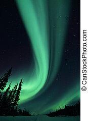 Aurora Borealis on the Ingram trail NWT