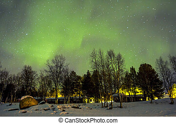 Northern Lights (Aurora borealis) over snowscape. - Northern...