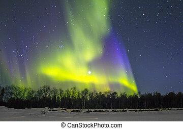 Northern Lights (Aurora borealis) over snowscape.