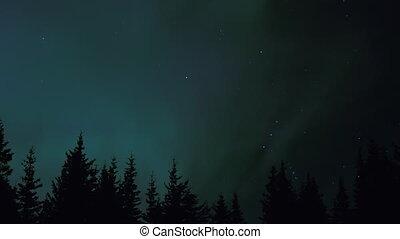 Northern Lights Aurora Trees Orion