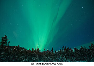 Northern Lights - Northern lights fill the night sky.