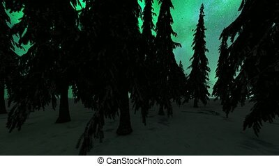 Northern lights over the forest in Norway. Aurora borealis.