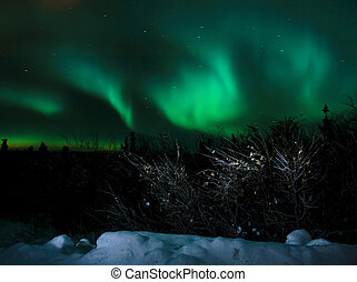 Northern Lights - The aurora borealis viewed north of...
