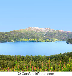 Northern Norway landscape with fjord, mountains and forest