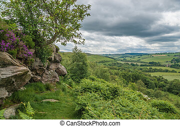 Northumberland Countryside - Corby Crag, Overlooking...