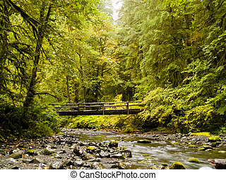 Northwest River - A bridge over a river in the Pacific...