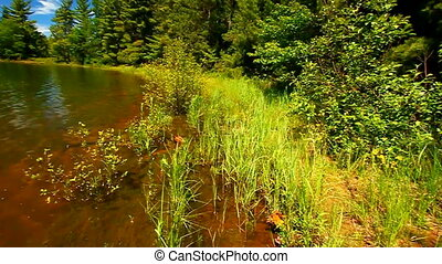 Northwoods Lake Landscape - Northwoods lake scenery in the...