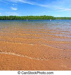 northwoods, plage, natation