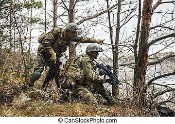 noruego, bosque, soldados