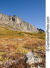 noruego, montaña, detalle
