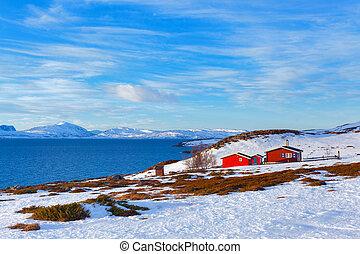 norvège, dans, hiver