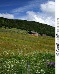 norway, 风景