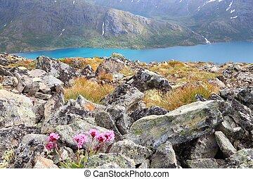 norwegen, natur