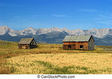 Two 1700's style Norwegian barns stand in the fields of ranch lands with Montanas Battle Mountains in the background.