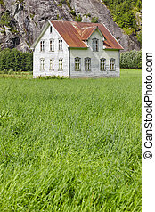 Norwegian antique traditional wooden house with grass and mountain