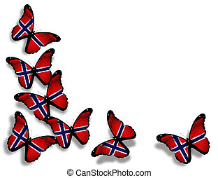 Norwegian flag butterflies, isolated on white background