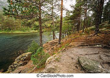 Norwegian nature in  Husedalen - Valley of waterfalls Norway