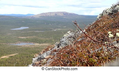 Norwegian plateau fjelds and taiga. View from top of...
