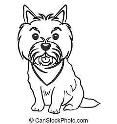 Norwich terrier dog wearing handkerchief sit pencil drawing sketch isolated on white