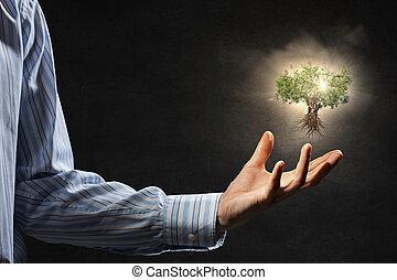 nosso, proteção, natureza, mãos