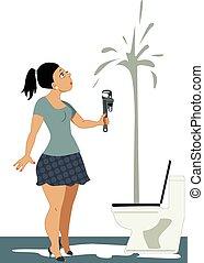 Not a plumber