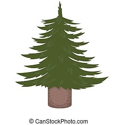Not decorated Christmas tree. Vector illustration isolated on white background.