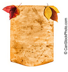 nota, otoño, papel, viejo, hojas