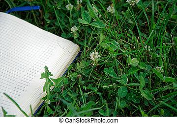 notatnik, trawa, park, zielony, otwarty