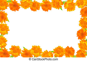 Note card with orange flowers.