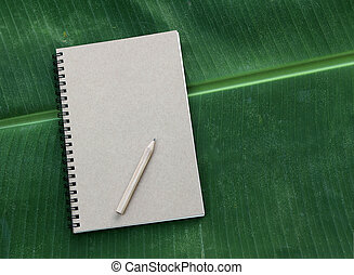 notebook and pencil on banana leaf